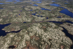 Figure 2: Typical landscape of the study area in the taiga of northern Québec